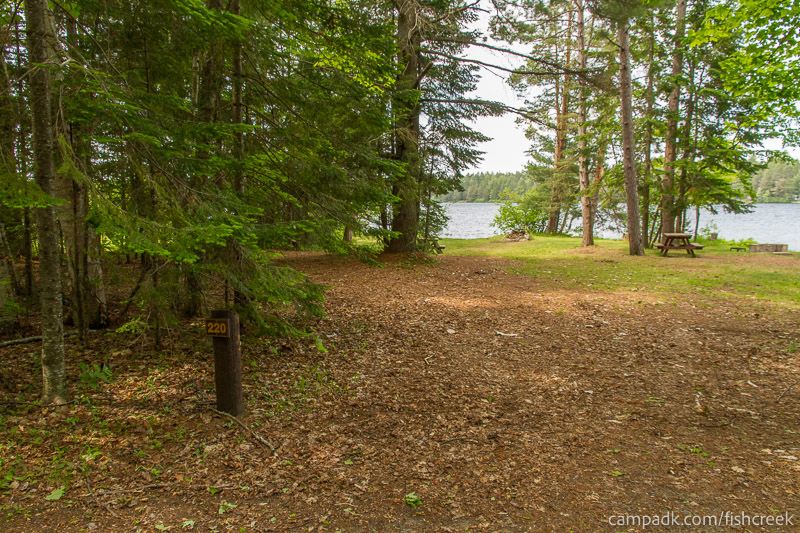 Campsite Photo of Site 220 at Fish Creek Pond Campground, New York - Looking at Site from Road Sign Visible