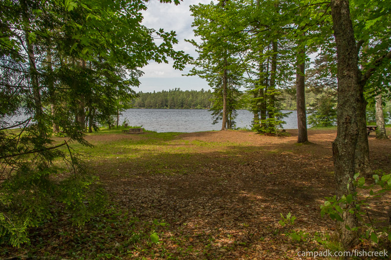 Campsite Photo of Site 221 at Fish Creek Pond Campground, New York - Looking at Site from Part Way In