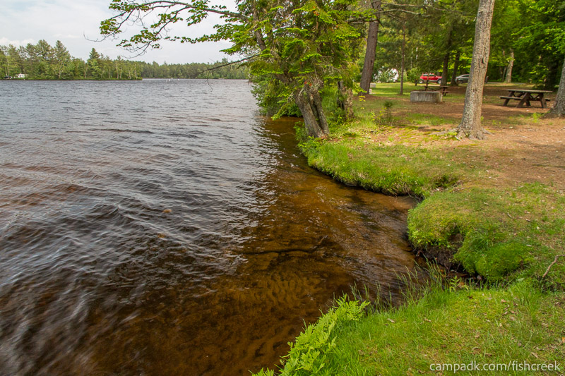 Campsite Photo of Site 221 at Fish Creek Pond Campground, New York - Shoreline