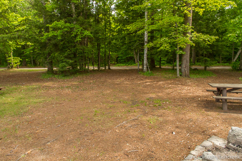 Campsite Photo of Site 222 at Fish Creek Pond Campground, New York - Looking Back Towards Road