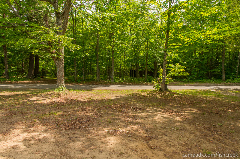 Campsite Photo of Site 224 at Fish Creek Pond Campground, New York - Looking Back Towards Road