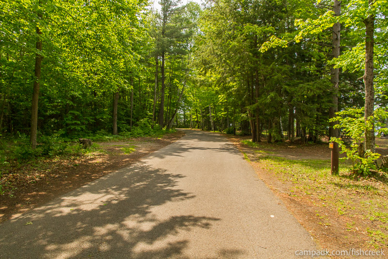 Campsite Photo of Site 224 at Fish Creek Pond Campground, New York - View Down Road from Campsite