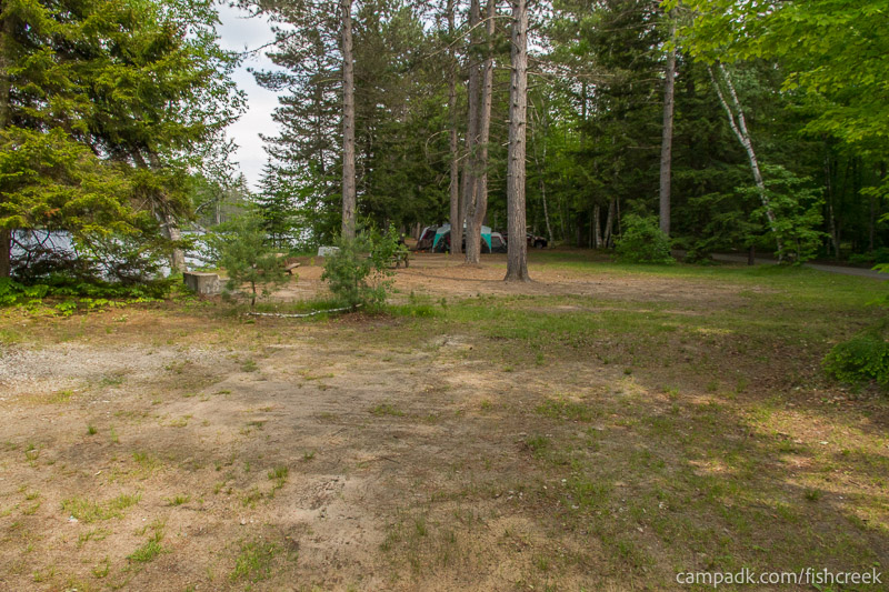 Campsite Photo of Site 240 at Fish Creek Pond Campground, New York - Cross Site View