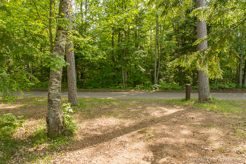 Campsite Photo of Site 240 at Fish Creek Pond Campground, New York - Looking Back Towards Road