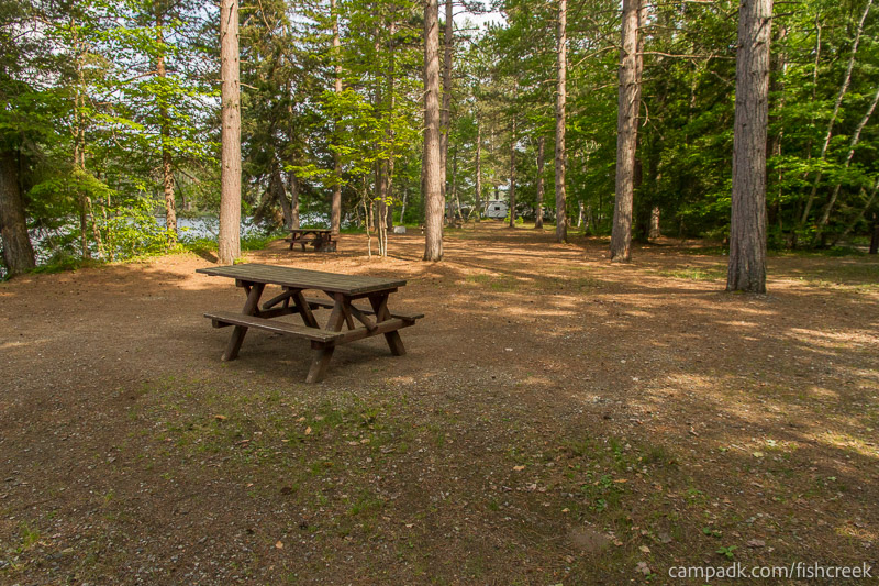 Campsite Photo of Site 244 at Fish Creek Pond Campground, New York - Cross Site View