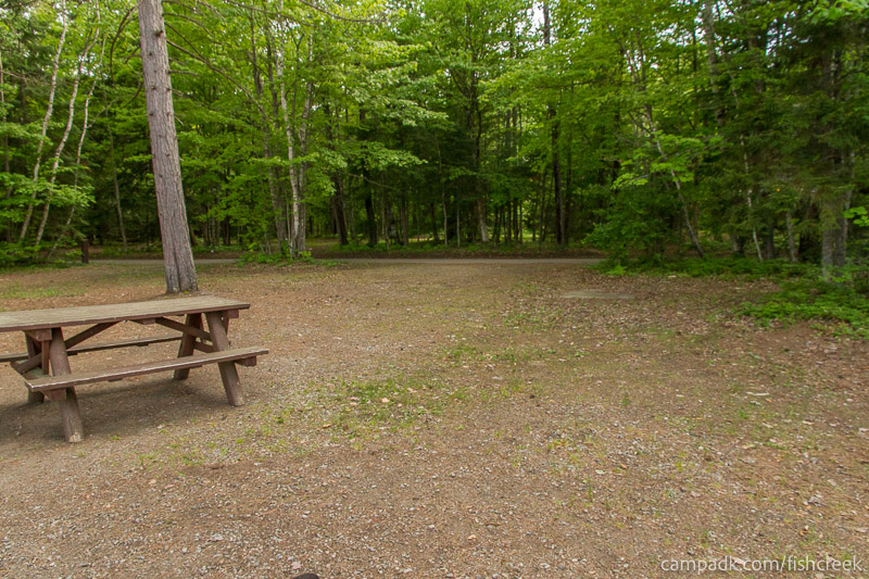 Campsite Photo of Site 244 at Fish Creek Pond Campground, New York - Looking Back Towards Road
