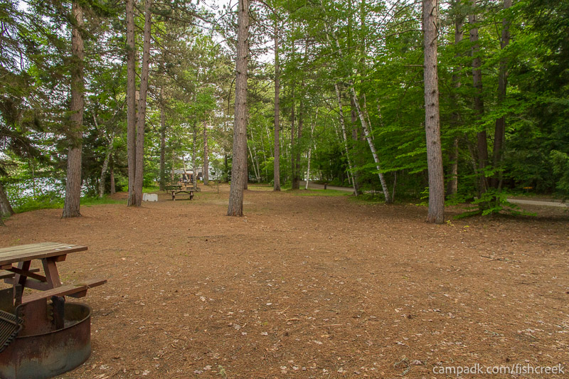 Campsite Photo of Site 245 at Fish Creek Pond Campground, New York - Cross Site View