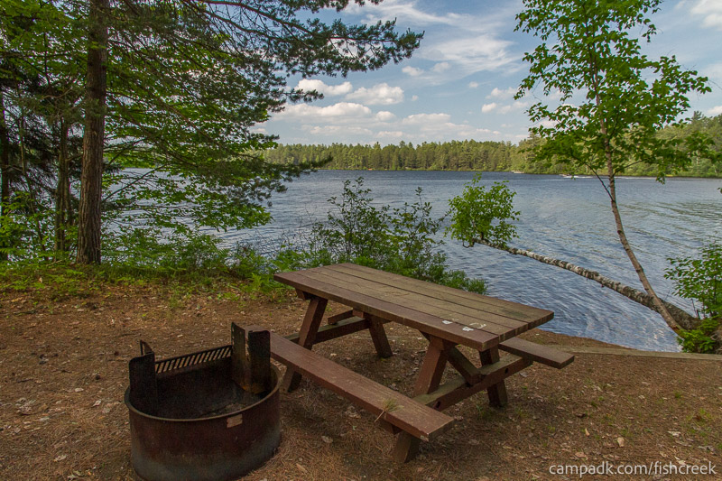 Campsite Photo of Site 245 at Fish Creek Pond Campground, New York - Fireplace View
