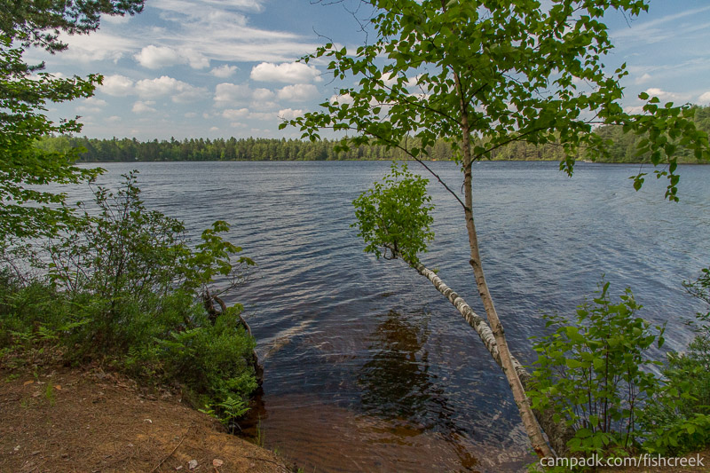 Campsite Photo of Site 245 at Fish Creek Pond Campground, New York - View from Shoreline
