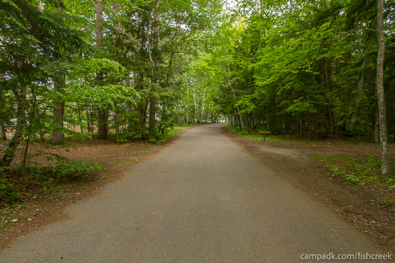 Campsite Photo of Site 245 at Fish Creek Pond Campground, New York - View Down Road from Campsite