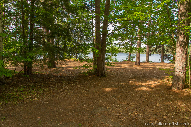 Campsite Photo of Site 245 at Fish Creek Pond Campground, New York - Looking at Site from Road