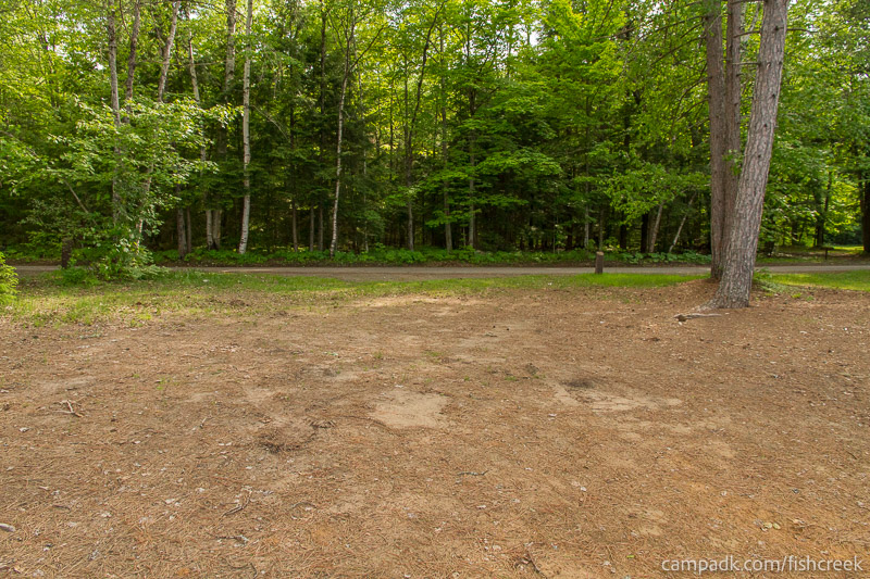 Campsite Photo of Site 247 at Fish Creek Pond Campground, New York - Looking Back Towards Road