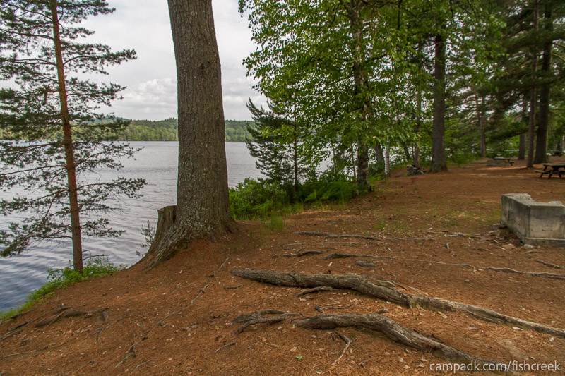 Campsite Photo of Site 251 at Fish Creek Pond Campground, New York - Cross Site View