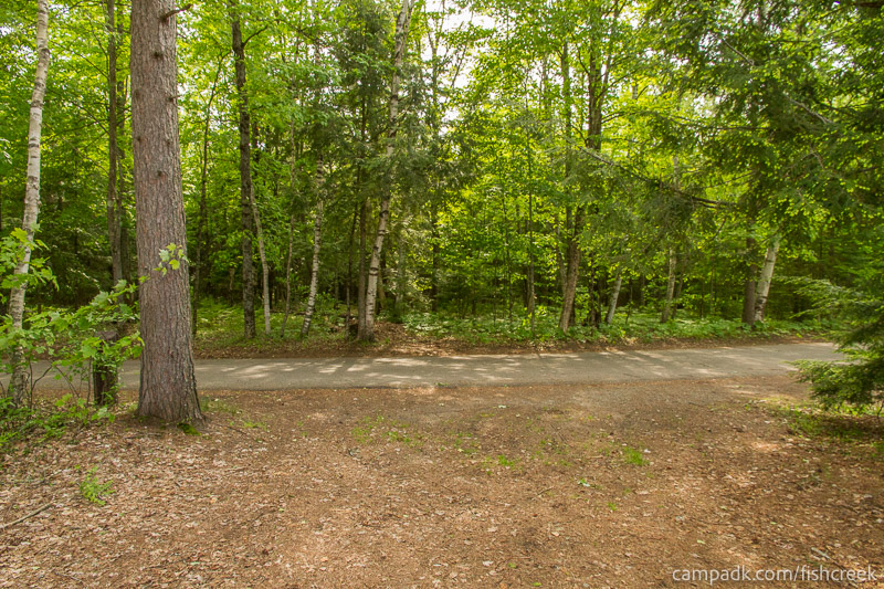 Campsite Photo of Site 251 at Fish Creek Pond Campground, New York - Looking Back Towards Road