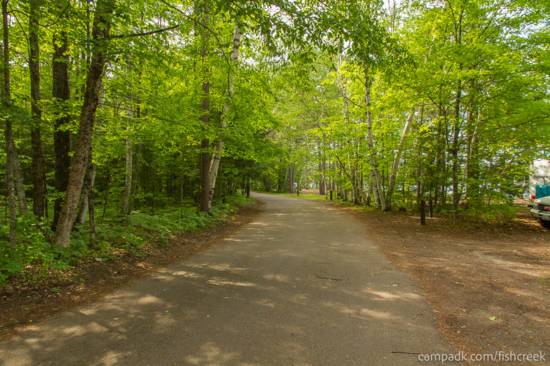 Campsite Photo of Site 251 at Fish Creek Pond Campground, New York - View Down Road from Campsite