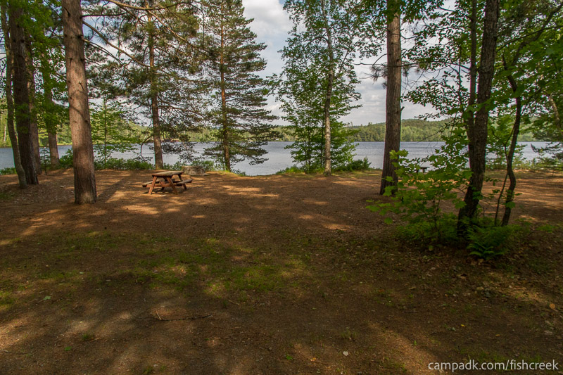 Campsite Photo of Site 255 at Fish Creek Pond Campground, New York - Looking at Site from Road