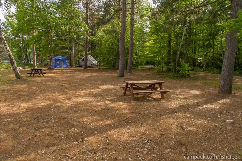 Campsite Photo of Site 255 at Fish Creek Pond Campground, New York - Cross Site View
