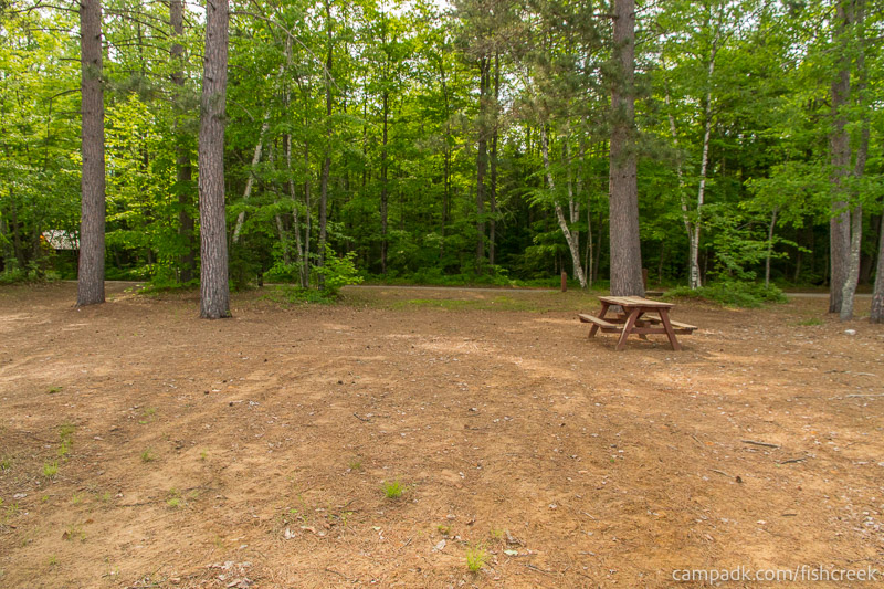 Campsite Photo of Site 255 at Fish Creek Pond Campground, New York - Looking Back Towards Road