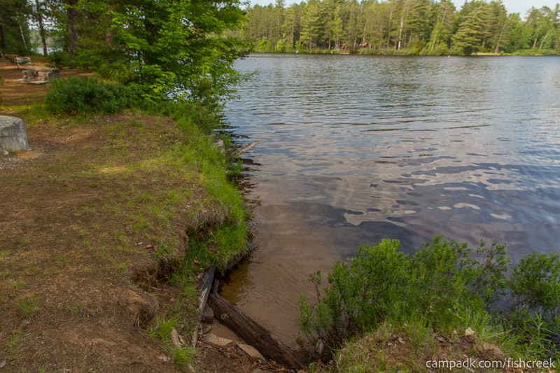 Campsite Photo of Site 256 at Fish Creek Pond Campground, New York - Shoreline