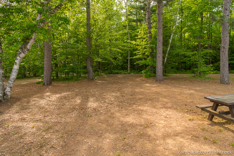 Campsite Photo of Site 256 at Fish Creek Pond Campground, New York - Looking Back Towards Road