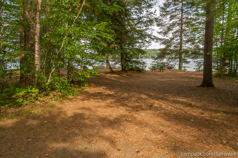 Campsite Photo of Site 259 at Fish Creek Pond Campground, New York - Looking at Site from Road