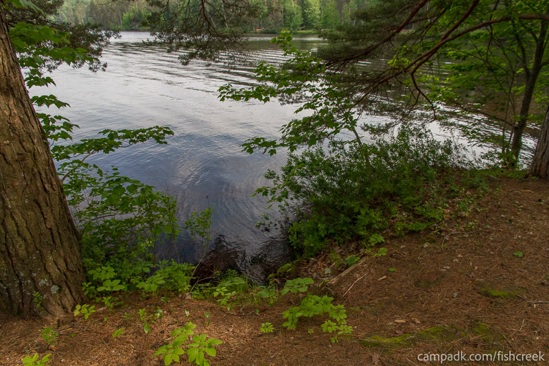 Campsite Photo of Site 259 at Fish Creek Pond Campground, New York - Shoreline