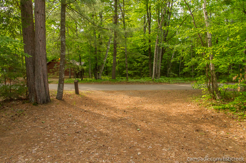 Campsite Photo of Site 259 at Fish Creek Pond Campground, New York - Looking Back Towards Road
