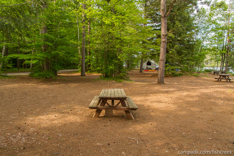 Campsite Photo of Site 260 at Fish Creek Pond Campground, New York - Cross Site View