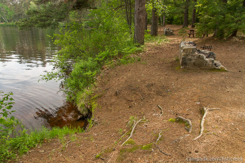 Campsite Photo of Site 260 at Fish Creek Pond Campground, New York - Shoreline