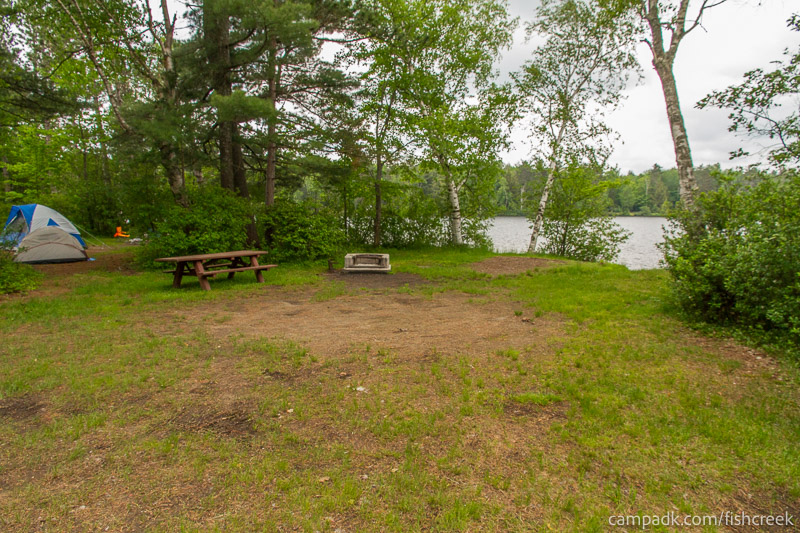 Campsite Photo of Site 69 at Fish Creek Pond Campground, New York - Looking at Site from Road