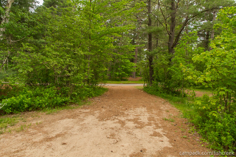 Campsite Photo of Site 66 at Fish Creek Pond Campground, New York - Looking Back Towards Road