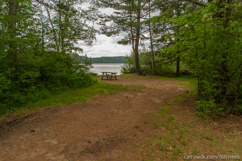 Campsite Photo of Site 65 at Fish Creek Pond Campground, New York - Looking at Site from Road