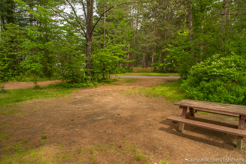 Campsite Photo of Site 65 at Fish Creek Pond Campground, New York - Looking Back Towards Road