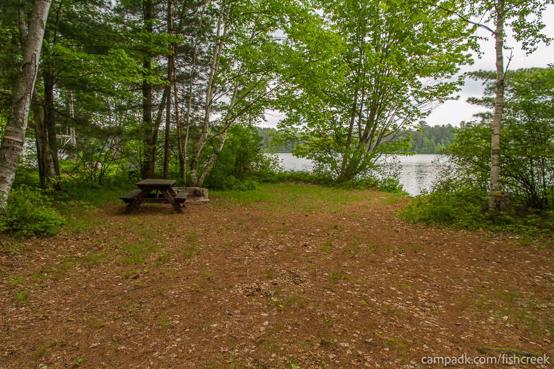 Campsite Photo of Site R1 at Fish Creek Pond Campground, New York - Looking at Site from Part Way In