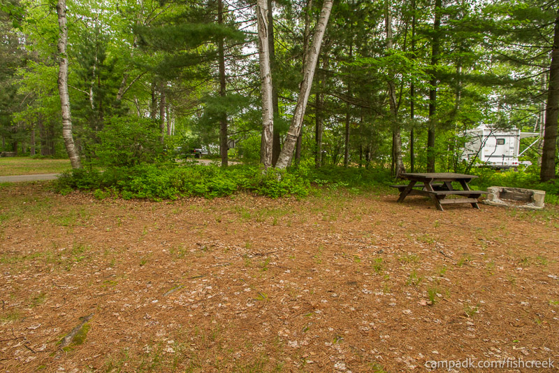 Campsite Photo of Site R1 at Fish Creek Pond Campground, New York - Cross Site View