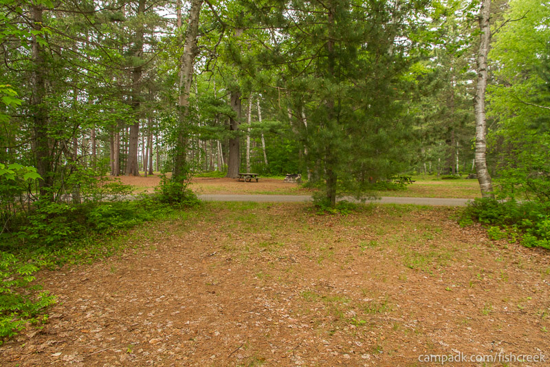 Campsite Photo of Site R1 at Fish Creek Pond Campground, New York - Looking Back Towards Road