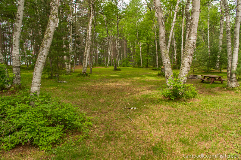 Campsite Photo of Site A5 at Fish Creek Pond Campground, New York - Looking at Site from Road