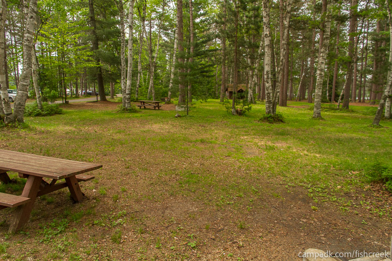Campsite Photo of Site A5 at Fish Creek Pond Campground, New York - Cross Site View