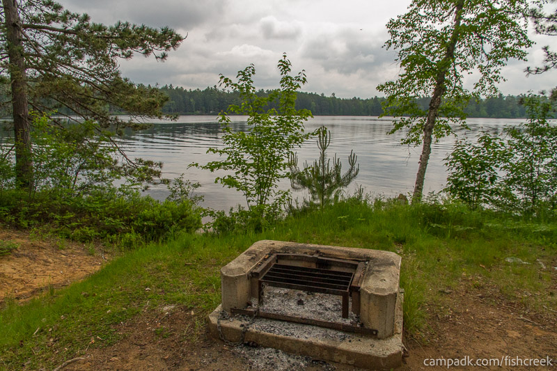 Campsite Photo of Site 54 at Fish Creek Pond Campground, New York - Fireplace View