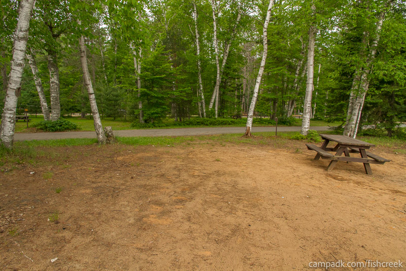 Campsite Photo of Site 54 at Fish Creek Pond Campground, New York - Looking Back Towards Road