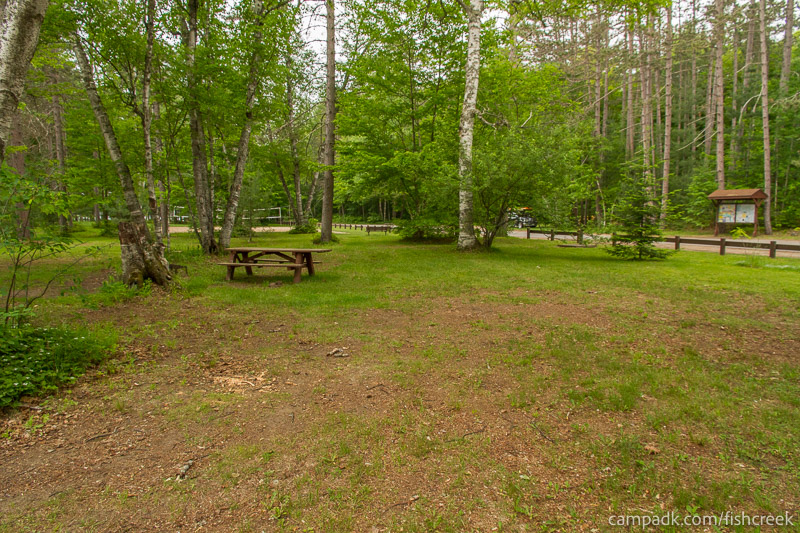 Campsite Photo of Site A1 at Fish Creek Pond Campground, New York - Looking at Site from Part Way In