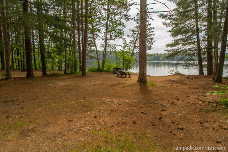 Campsite Photo of Site 46 at Fish Creek Pond Campground, New York - Looking at Site from Road