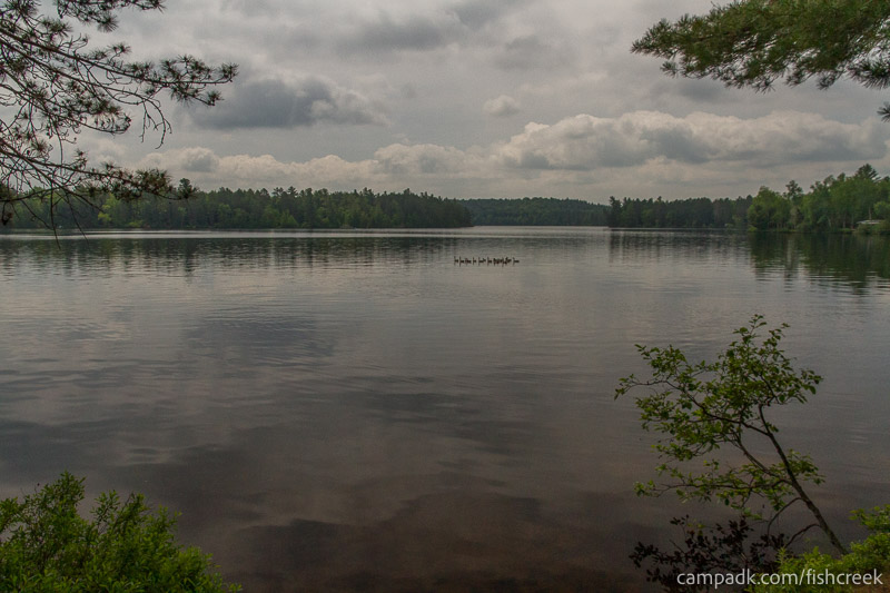 Campsite Photo of Site 46 at Fish Creek Pond Campground, New York - View from Shoreline