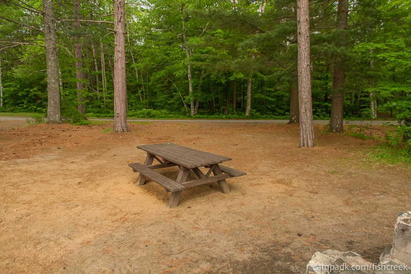 Campsite Photo of Site 46 at Fish Creek Pond Campground, New York - Looking Back Towards Road