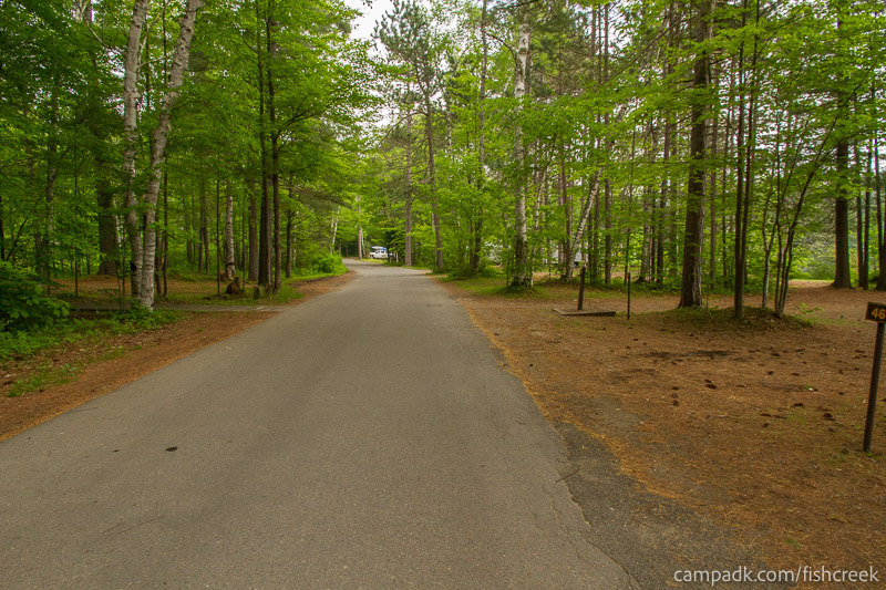Campsite Photo of Site 46 at Fish Creek Pond Campground, New York - View Down Road from Campsite
