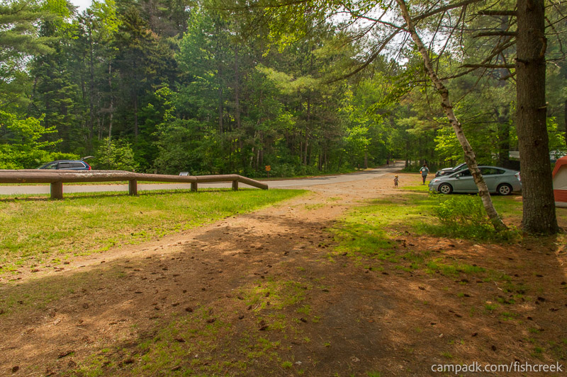 Campsite Photo of Site 33 at Fish Creek Pond Campground, New York - Looking Back Towards Road
