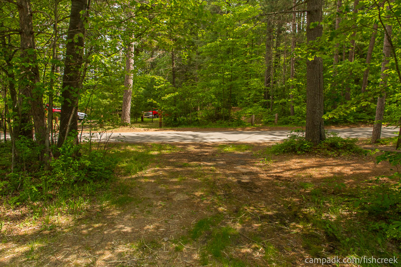 Campsite Photo of Site 28 at Fish Creek Pond Campground, New York - Looking Back Towards Road