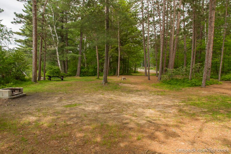 Campsite Photo of Site 26 at Fish Creek Pond Campground, New York - Cross Site View