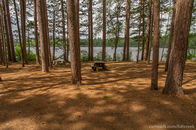 Campsite Photo of Site 21 at Fish Creek Pond Campground, New York - Looking at Site from Road