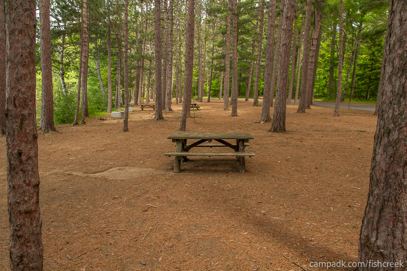 Campsite Photo of Site 21 at Fish Creek Pond Campground, New York - Cross Site View
